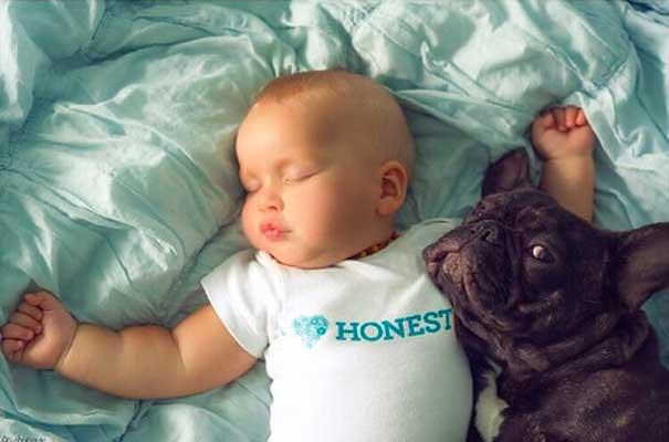 бебе-и-куче