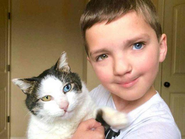 Момче с различни очи взел от приюта котка със същите необичайни очи