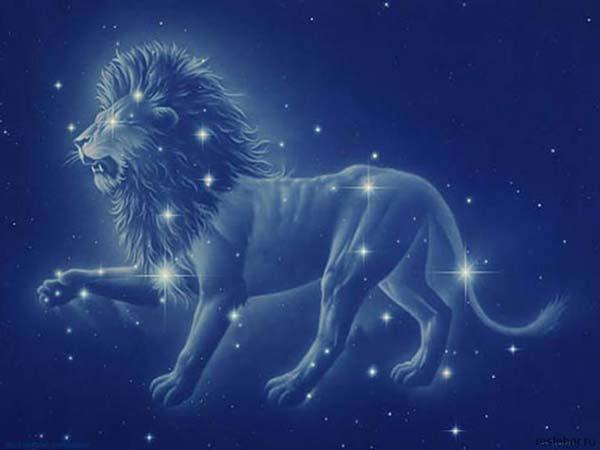 Силни и решителни! 20 факта за зодия Лъв