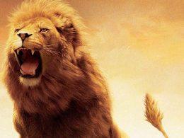 Четири от най-силните зодии и причината за тяхното могъщие
